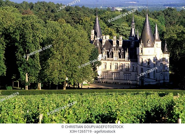 castle of the wine growing estate Ladoucette, Pouilly-sur-Loire, Nievre department, region of Burgundy, center of France, Europe
