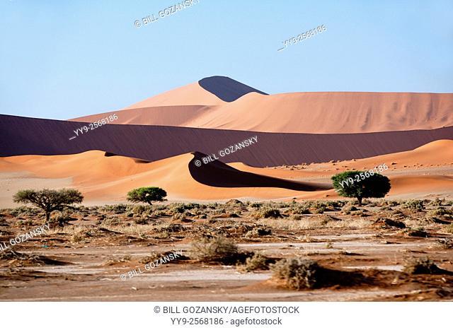 Sossusvlei National Park - Namib-Naukluft National Park, Namibia, Africa