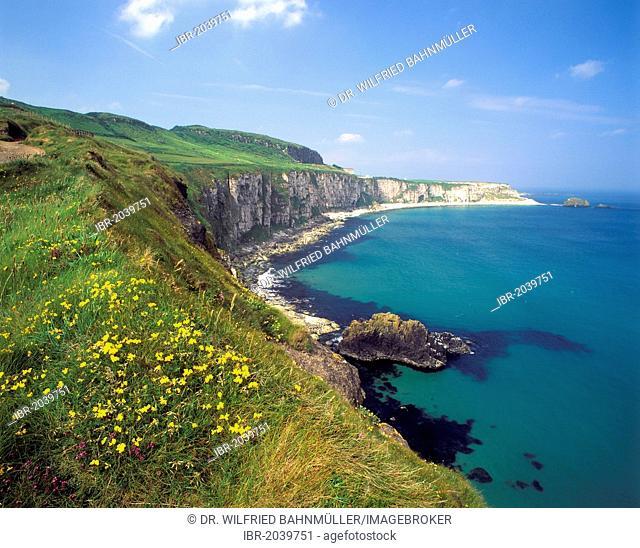 Coastline at Carrick a Rede, County Antrim, Northern Ireland, United Kingdom, Europe