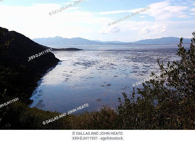 Africa, Tunisia, Ichkeul National Park, Lake Ichkeul