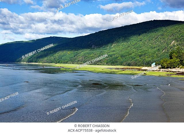 Small summer cottage next to a vast expanse of densely forested shoreline along the St. Lawrence River at Saint-Joseph-de-la-Rive, Charlevoix, Quebec, Canada