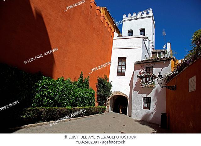 Typical Neighborhood of Santa Cruz, Seville, Spain