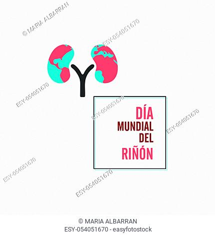 World kidney day with frame and spanish text. Isolated vector illustration