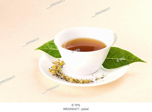Red tea in white ceramic cup with green leaf decoration
