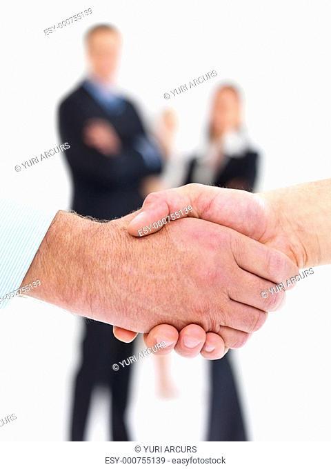 Business handshake - making a deal