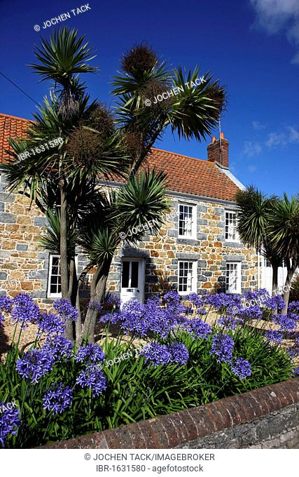 Typical Guernsey house made from solid stone and granite, with many flowers and plants, Guernsey, Channel Islands, Europe