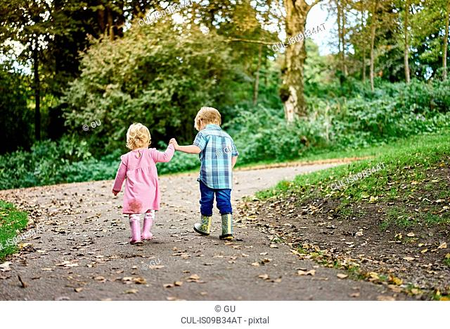 Rear view of brother and sister holding hands walking in park
