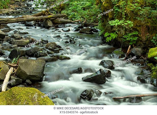 Bridal Veil trail, stream and waterfall is one of the most visited sites in the Columbia River Gorge