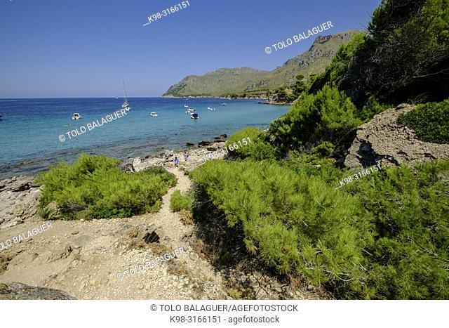 Arenalet de na Clara, Artà, peninsula de Llevant, Mallorca, balearic islands, Spain