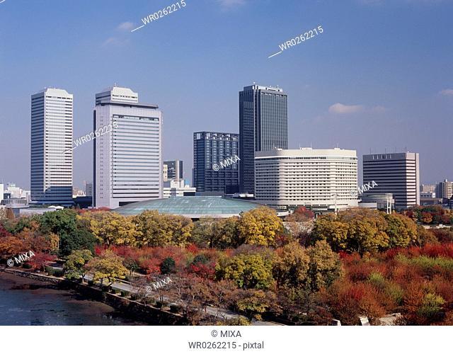 Autumn Leaves and Osaka Business Park, Osaka, Osaka, Japan
