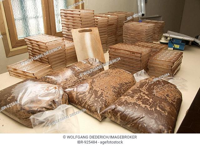 Packed chocolate with 70% cocoa, molds for praline and chocolate fabrication, Hacienda Bukare, cocoa cultivation and processing, Chacaracual, Rio Caribe, Sucre