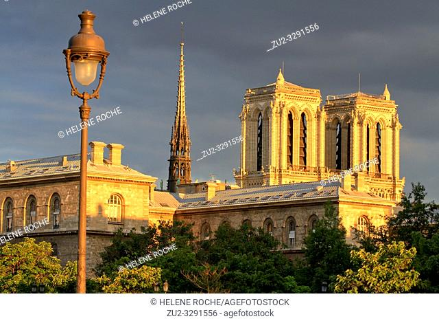 Wide angle view of the spire and the towers of Notre Dame at the golden hour, Paris, France