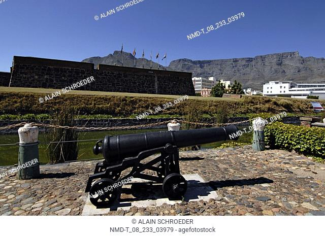 Cannon in a garden, Castle Of Good Hope, Lion Gate, Cape Town, Western Cape Province, South Africa