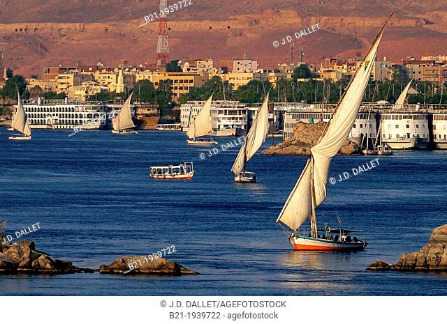 'Feluccas' and Nile's hotel boats on the Nile river at Aswan, Egypt