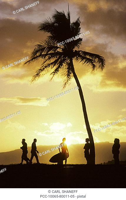 Palm tree and yellow sunset sky, silhouette of people on the beach