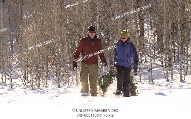 Couple in snow shoes dragging Christmas Tree through the snow / Ketchum, Idaho, United States