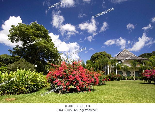 Sir Seewoosagur Ramgoolam Royal Botanical Garden of Pamplemousses , Mauritius, Africa