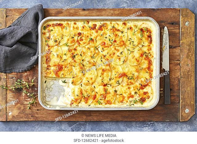 Creamy scalopped potato tray bake