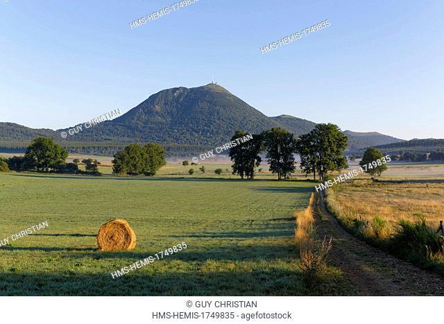 France, Puy de Dome, Parc Naturel Regional des Volcans d'Auvergne (Natural regional park of Volcans d'Auvergne), Lachamp plain