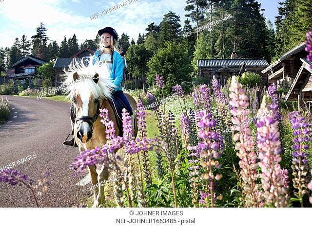 Girl riding on horse on road