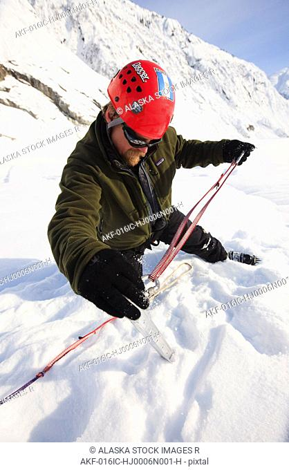 Climber sets a snow picket for protection while on top of Shakes Glacier, Stikine-LeConte Wilderness, Southeast Alaska
