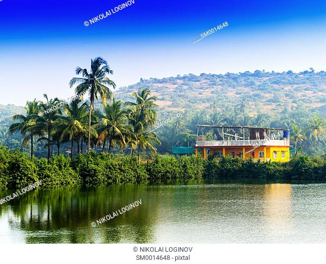 Horizontal vivid Indian house palms with river reflection background backdrop
