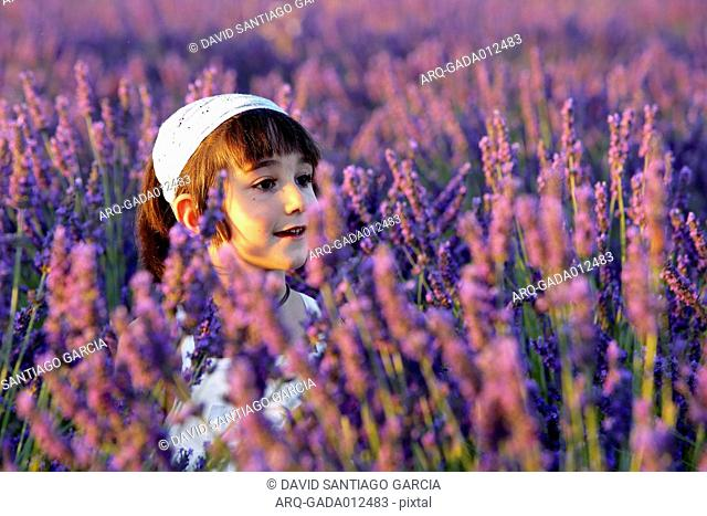 Portrait Of Beautiful Girl In The Field Of Lavender Plantation