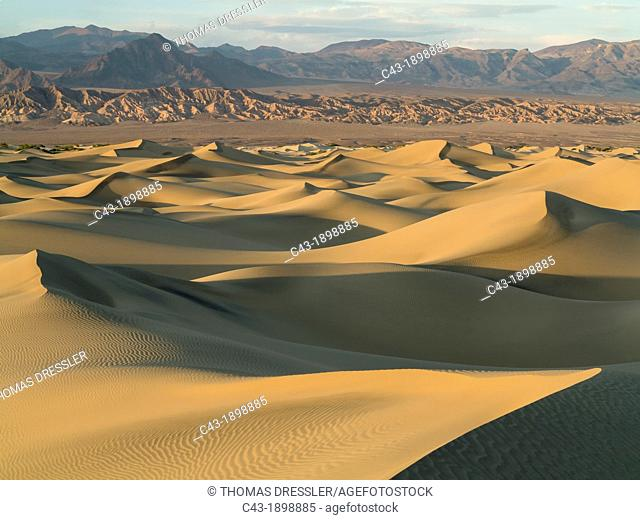 Mesquite Flat Sand Dunes and Amargosa Range in the evening in the Death Valley  Death Valley National Park, California, USA