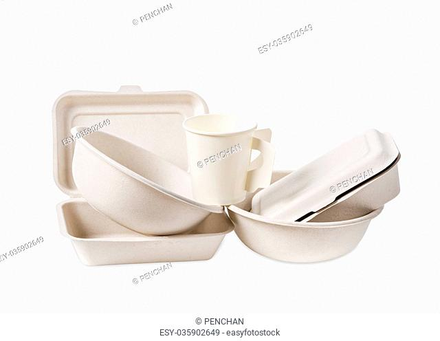 Group of product made from bagasse for container food
