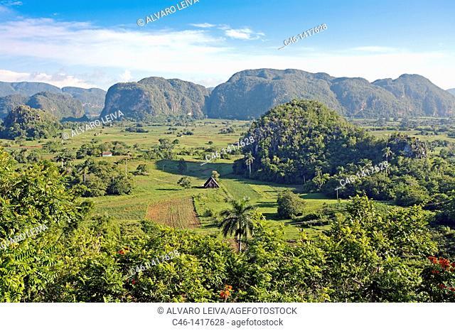 'Mogote' typical outcrop Dos Hermanas in Viñales Valley  Pinar del Río province, Cuba