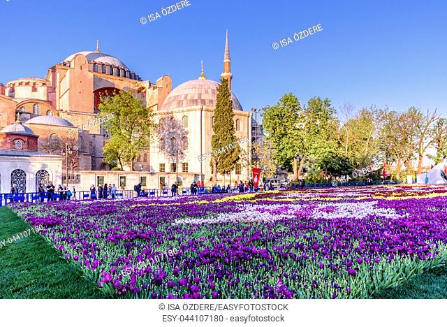 Unidentified people take pictures of Largest Carpet of Tulips of the World in Sultanahmet for tulip festival in Istanbul, Turkey. 21 April 2018
