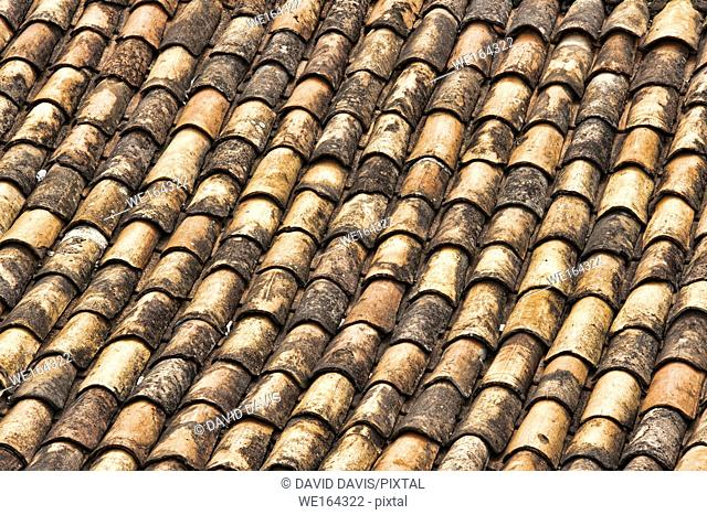 Pattern of Terra Cotta Shingles covering a roof in Brazil