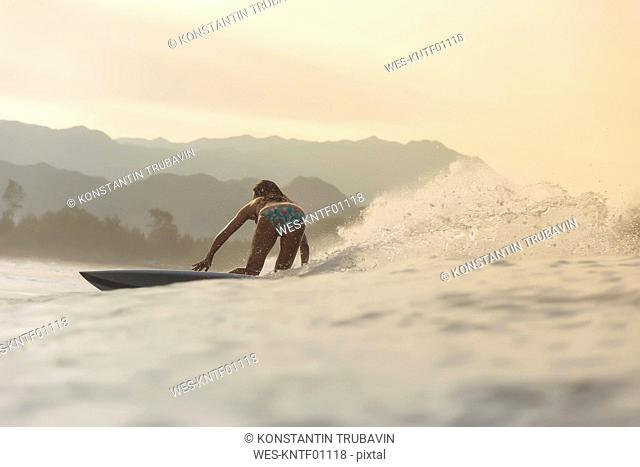 Indonesia, Sumatra, female surfer in the evening light