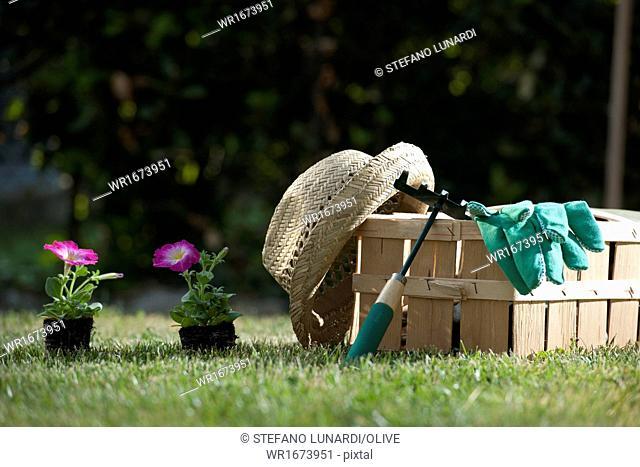 Still life of gardening objects