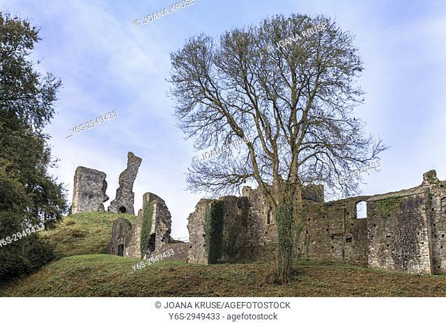 Okehampton Castle, Dartmoor, Devon, England, United Kingdom