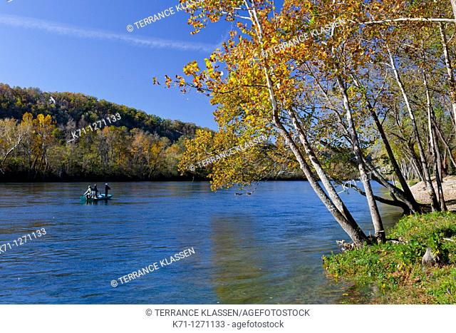 Fall foliage along the White River near the Gaston's Resort in Bull Shoals, Arkansas, USA