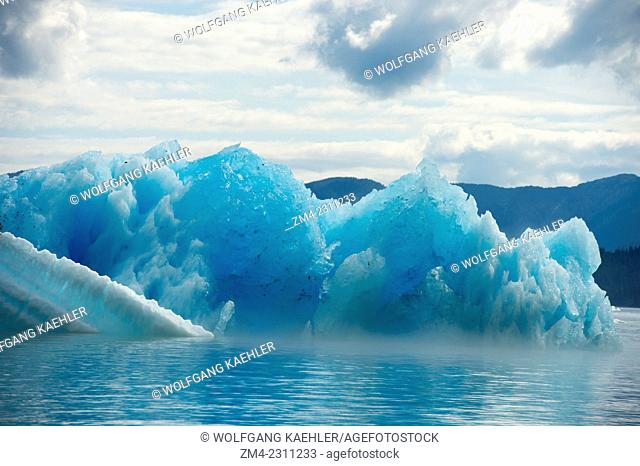 Ice fog developing at base of icebergs from LeConte Glacier drifting in LeConte Bay, Tongass National Forest, Southeast Alaska, USA
