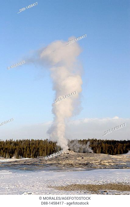 Old Faithful geyser, Yellowstone National Park, Wyoming-Montana, USA