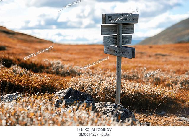 Autumn Norway Sentrum pointer background hd