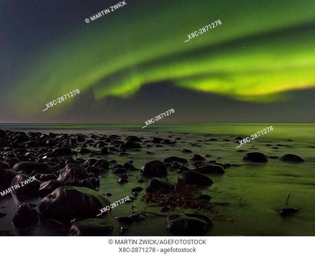 Northern Lights over Unstad Beach , island Vestvagoy. The Lofoten islands in northern Norway during winter. Europe, Scandinavia, Norway, February