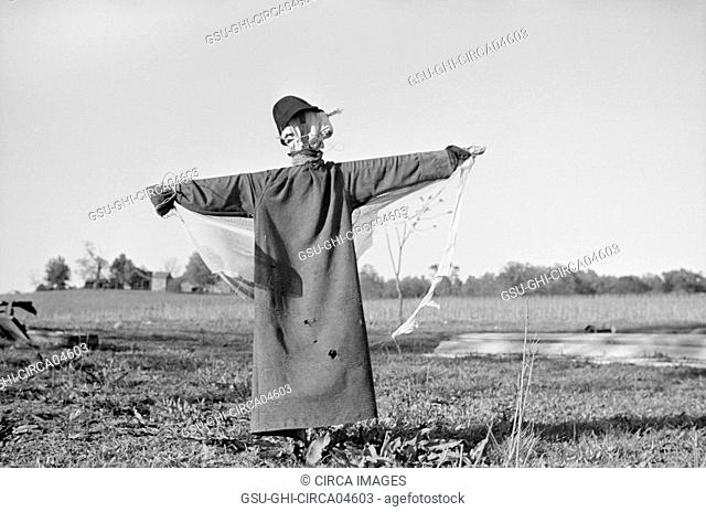 Scarecrow in Field, North Carolina, USA, John Vachon for Farm Security Administration, April 1938