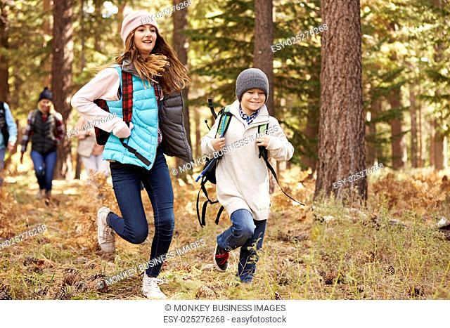 Kids run ahead of family hiking in forest, California, USA