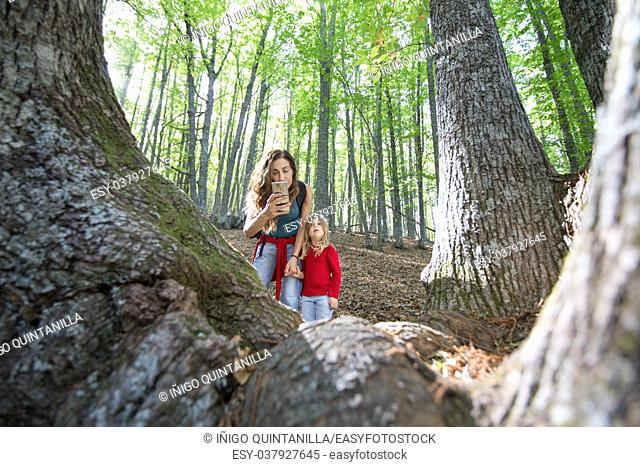 mother woman holding hand four years age blonde child with red shirt and blue jeans and taking a photo with mobile smartphone to a chestnut trunk in autumn...