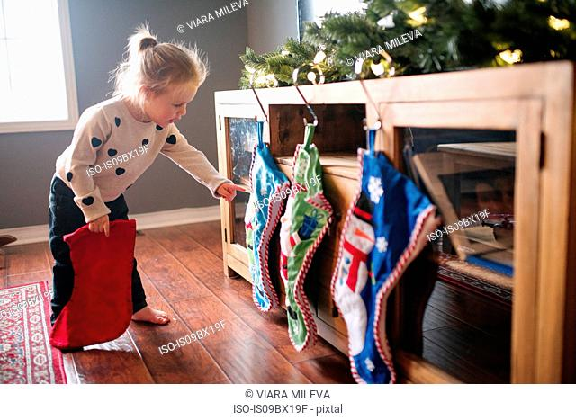 Toddler girl hanging up Christmas stockings