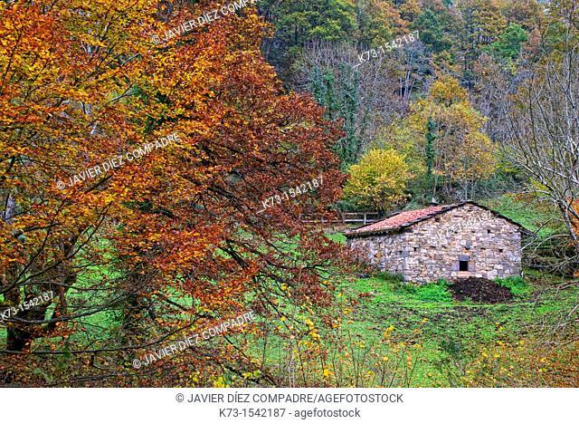 Cabin. Route of El Alba. Redes Natural Park and Biosphere Reserve. Soto de Agues. Sobrescobio Council. Asturias. Spain