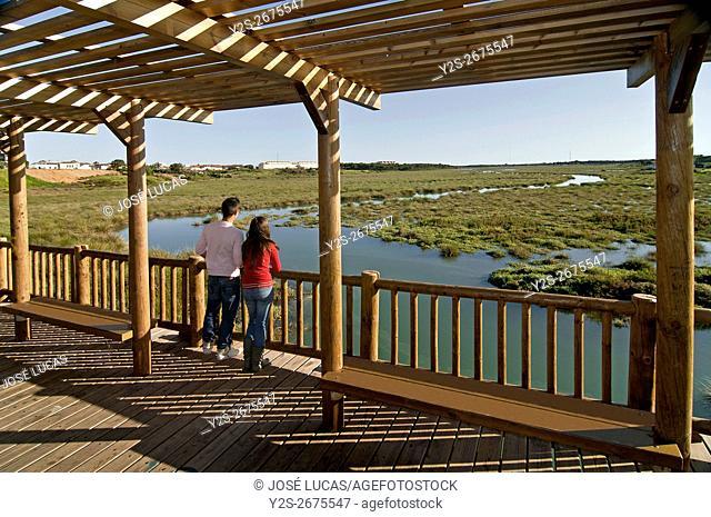 The Odiel Marshes Nature Reserve, Aljaraque, Huelva province, Region of Andalusia, Spain, Europe