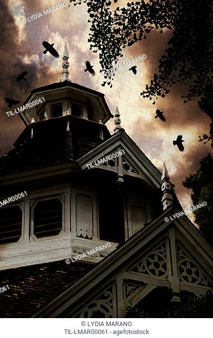 Crows near a Victorian carriage house can sense an approaching storm
