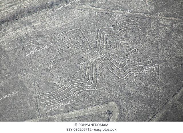 Aerial view of Nazca Lines - Spider geoglyph, Peru. The Lines were designated as a UNESCO World Heritage Site in 1994
