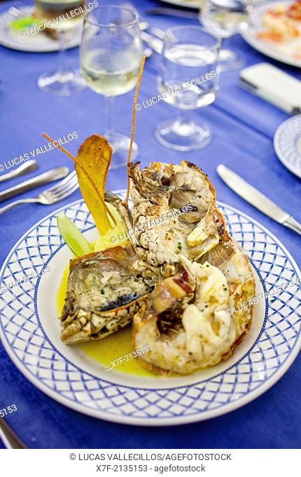 lobster, La Brisa restaurant, Barcelo Bavaro Beach Resort, Punta Cana, Dominican Republic