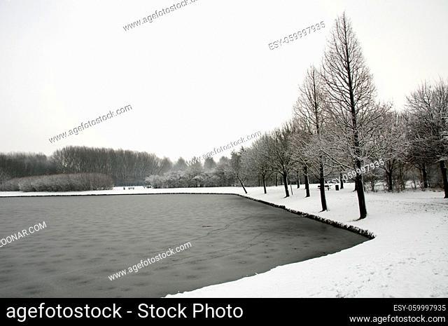 dutch landscape in the snow